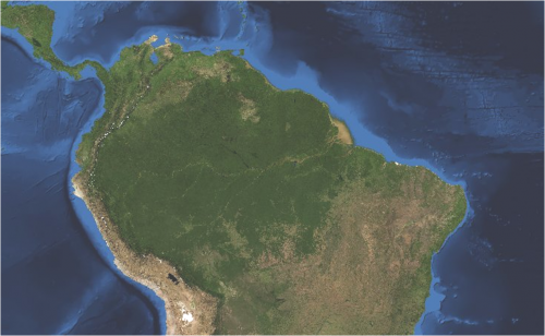 The Amazon Basin Forest | Global Forest Atlas